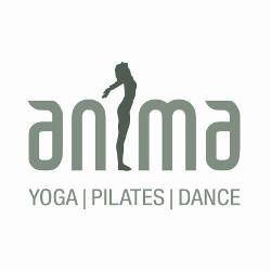 Anima Studio