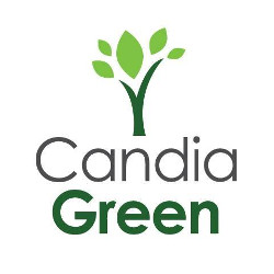 Candia Green