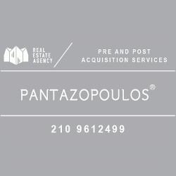 Θάνος Πανταζόπουλος